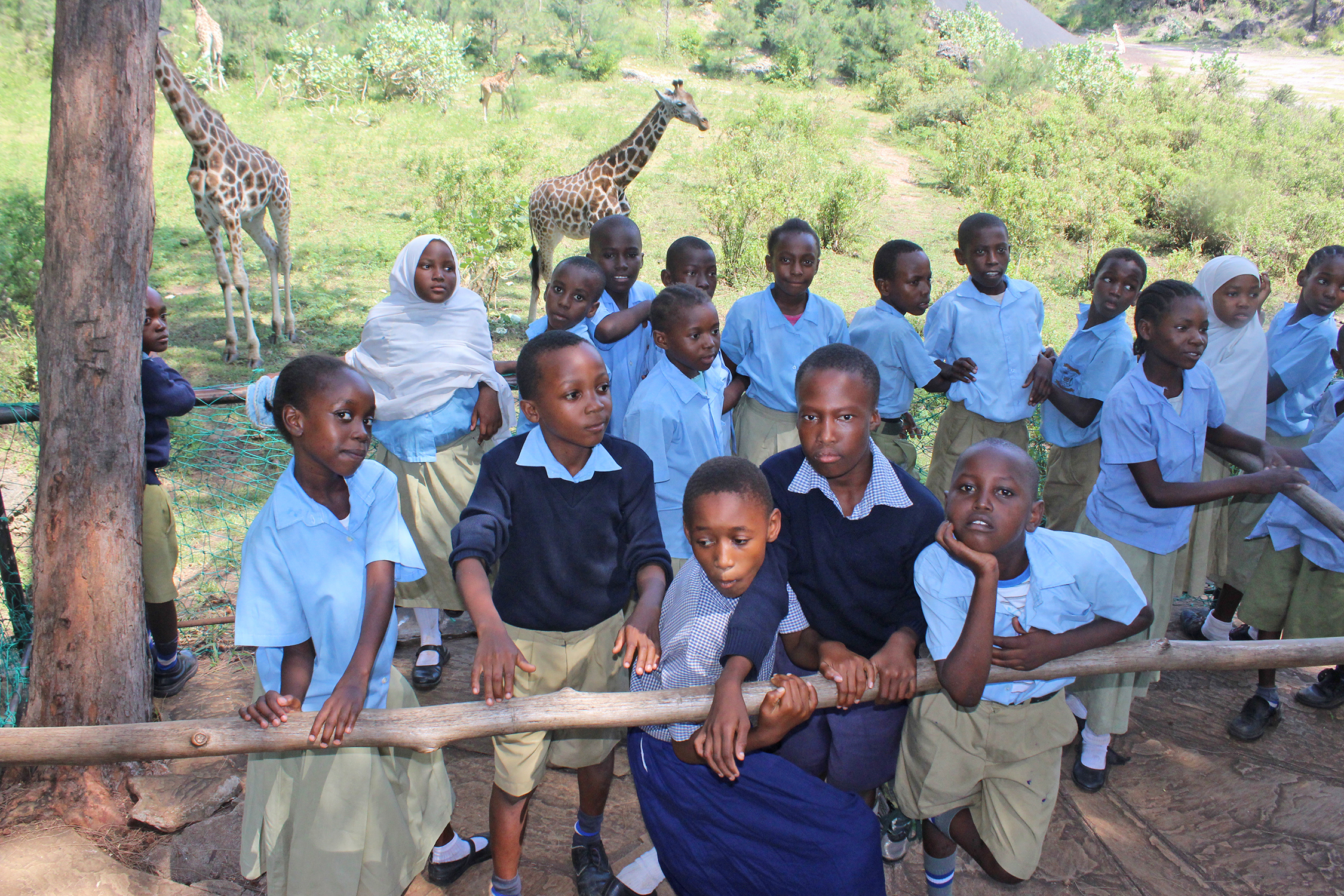 KIU students engage in an outdoor activity at a wild park. The program allows students to learn in settings ranging from the classroom to the beach to sports games. Photo courtesy of claude chained '18.